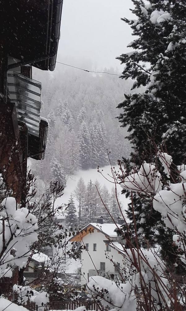 Neve bellissima