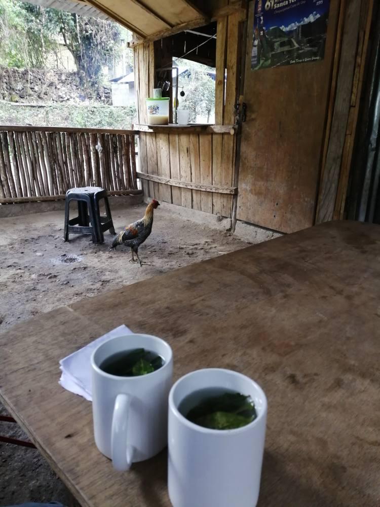 Tazze di mate de coca e gallinelle