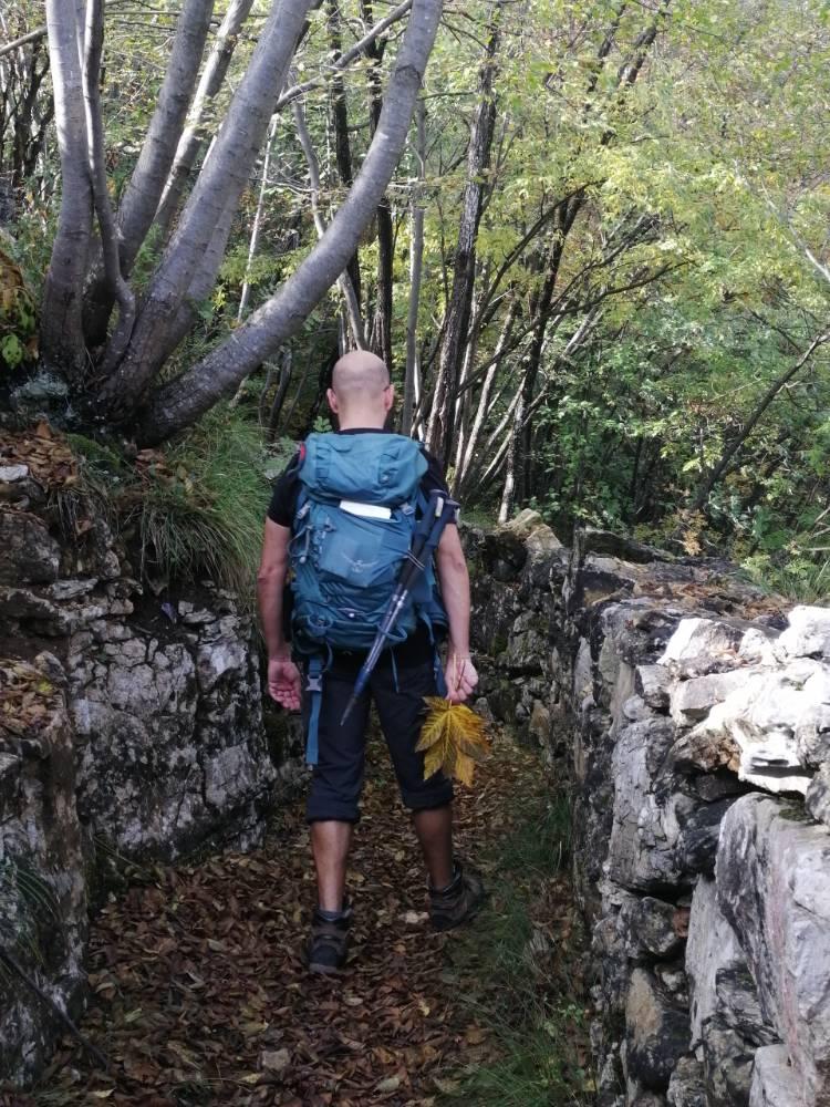 Davide raccoglie foglie sul sentiero del Vù