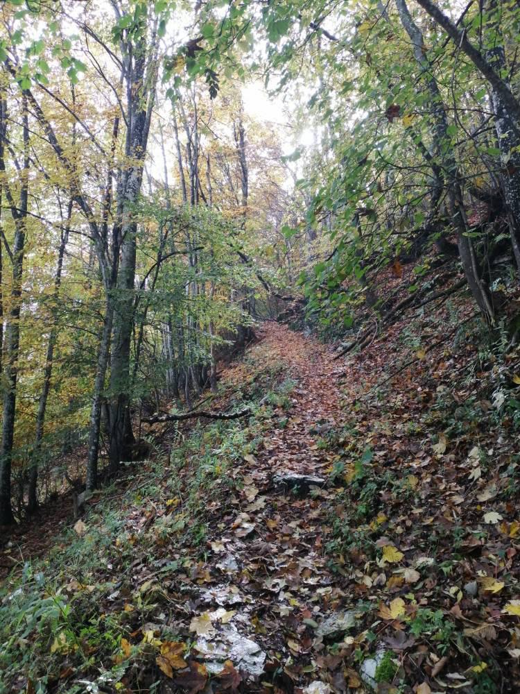 Sentiero del Vù sotto col d'Astiago