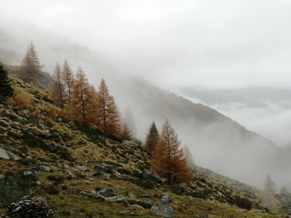 Panorami in Val Camonica con nebbia