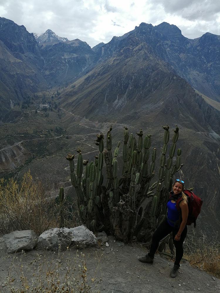 Silvia e altri cactus