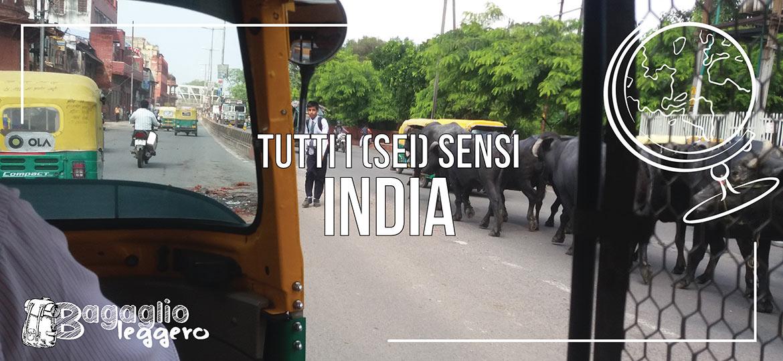i sei sensi dell'India