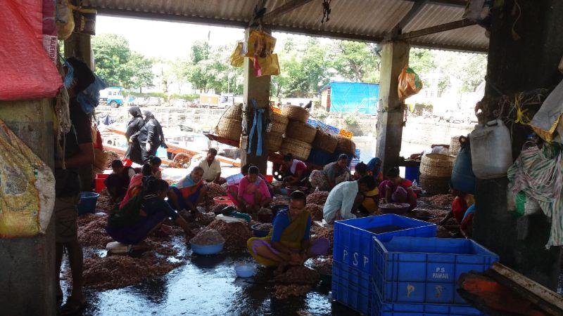 Sassoon docks a Mumbai