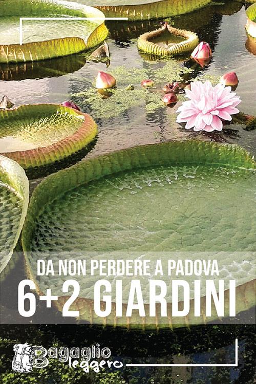 Sei più due giardini da non perdere a Padova pin