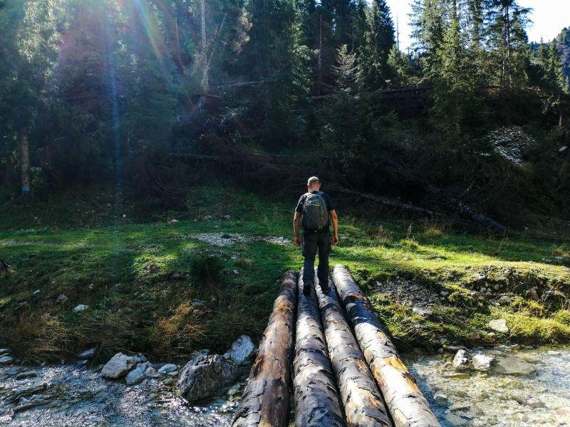 Davide sui tronchi del sentiero 727