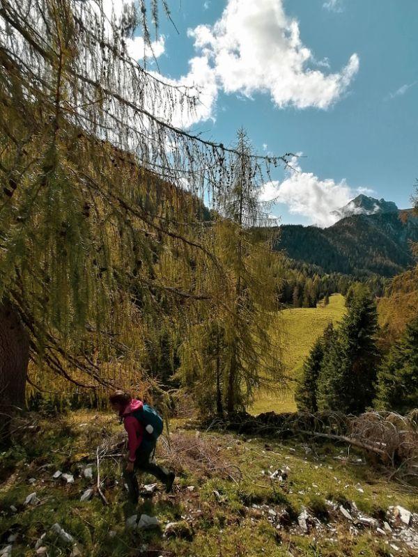 Silvia tra il foliage nei pressi del Rifugio Boz