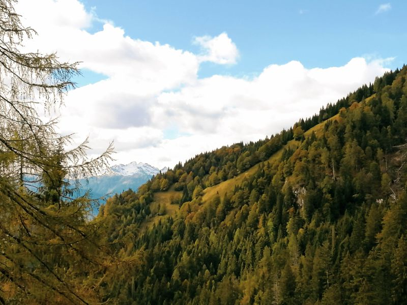 autunno nei pressi della Val Fonda