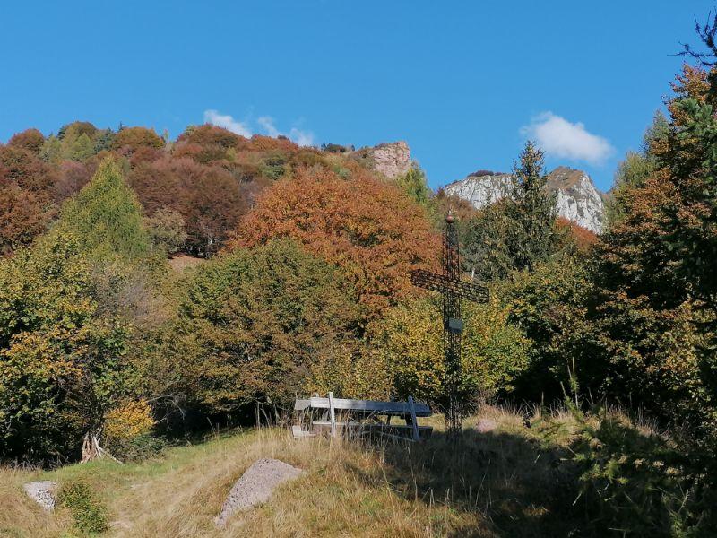 Foliage lungo l'anello di cima de l'albero