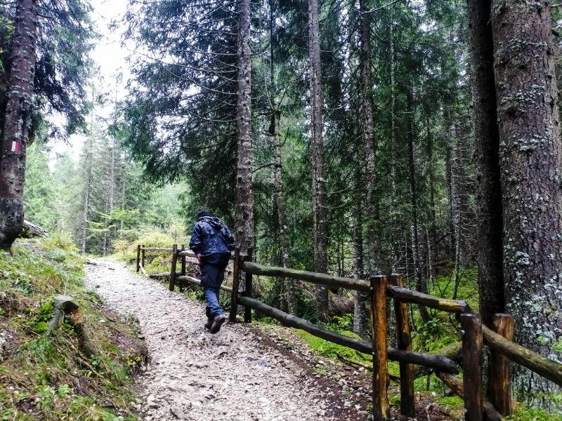 trekking facile ad Asiago al Rifugio Campolongo