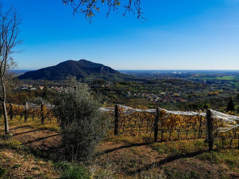 i più bei trekking dei Colli Euganei