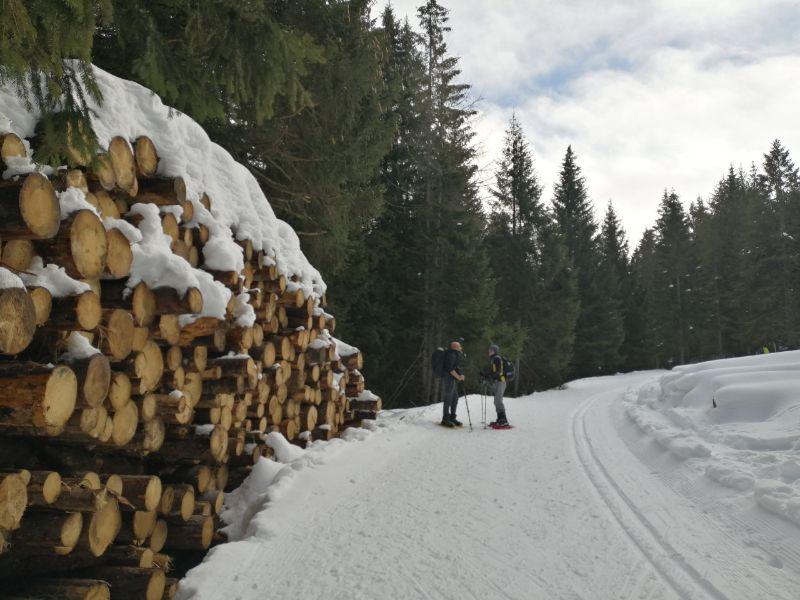 Millegrobbe ciaspolata in Trentino