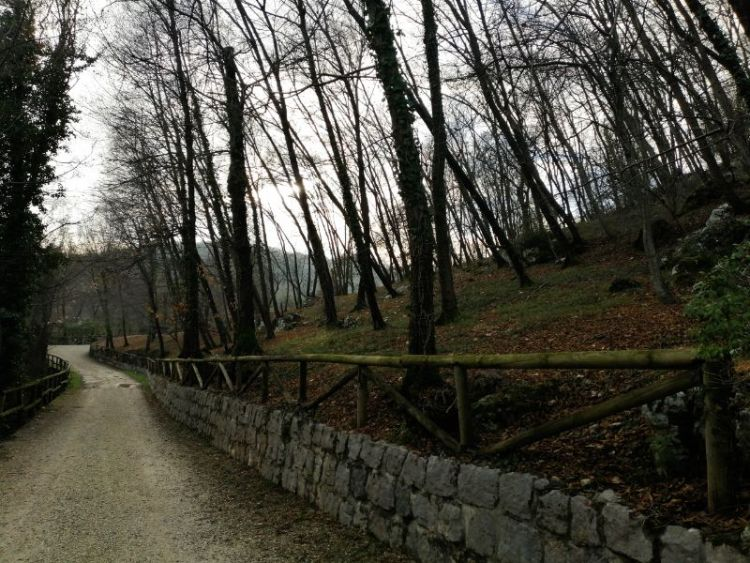 trekking sui Colli Berici